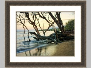 65172z Reaching for the sea 1 28x34 104.00