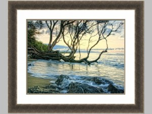 65173z Reaching for the Sea 2 28x34 104.00