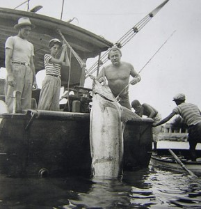 Aft Shot of Hemmingways catch on Board