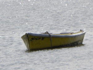 Another Manteo Skiff ,Pope
