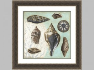 Antique Shell Collage 1 29121z