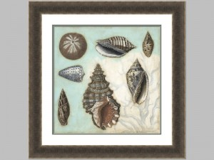 Antique Shell Collage 2 29122z