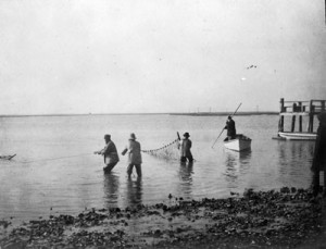 Casting Nets , A.Brown
