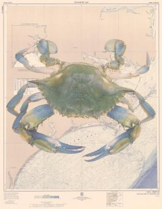 Crab over chart NC Other backgrounds available Atlantic City Old custom sizeable