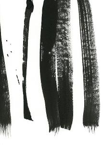 L879D Lehnhardt  Black and White Strokes  3