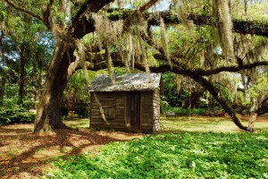 Lowcountry Shed