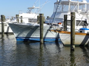 MANTEO WATERFRONT,K.POPE