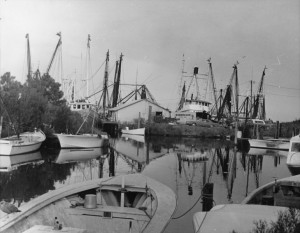 Outer Banks History Collection 16