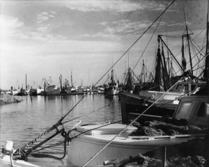 Outer Banks History Collection 19