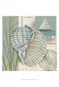 Seaside Shell 1 20x20 47.50