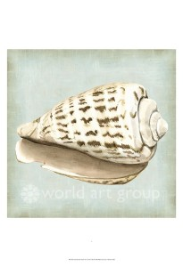 shell dreams 2 46143d 17x17 38.00