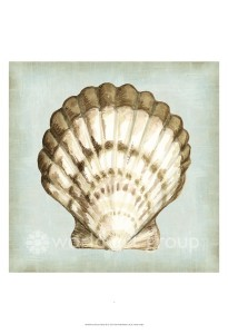shell dreams 3 46144d 17x17 38.00